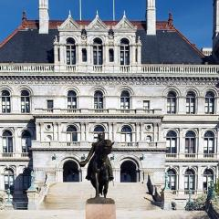 process server, albany county, new york